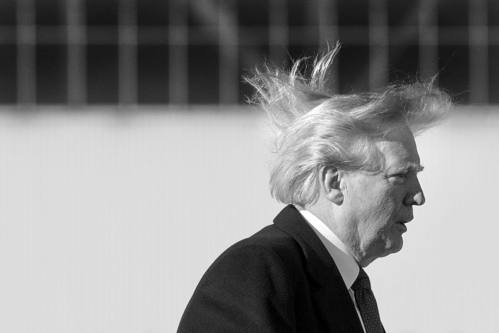 Donald Trump hair in the wind