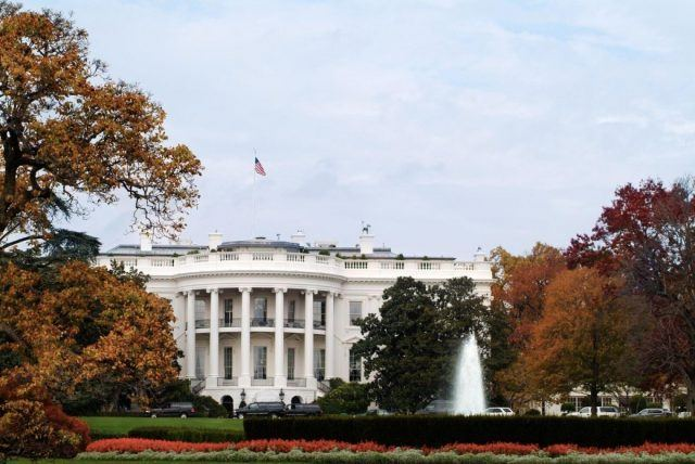 White House trees