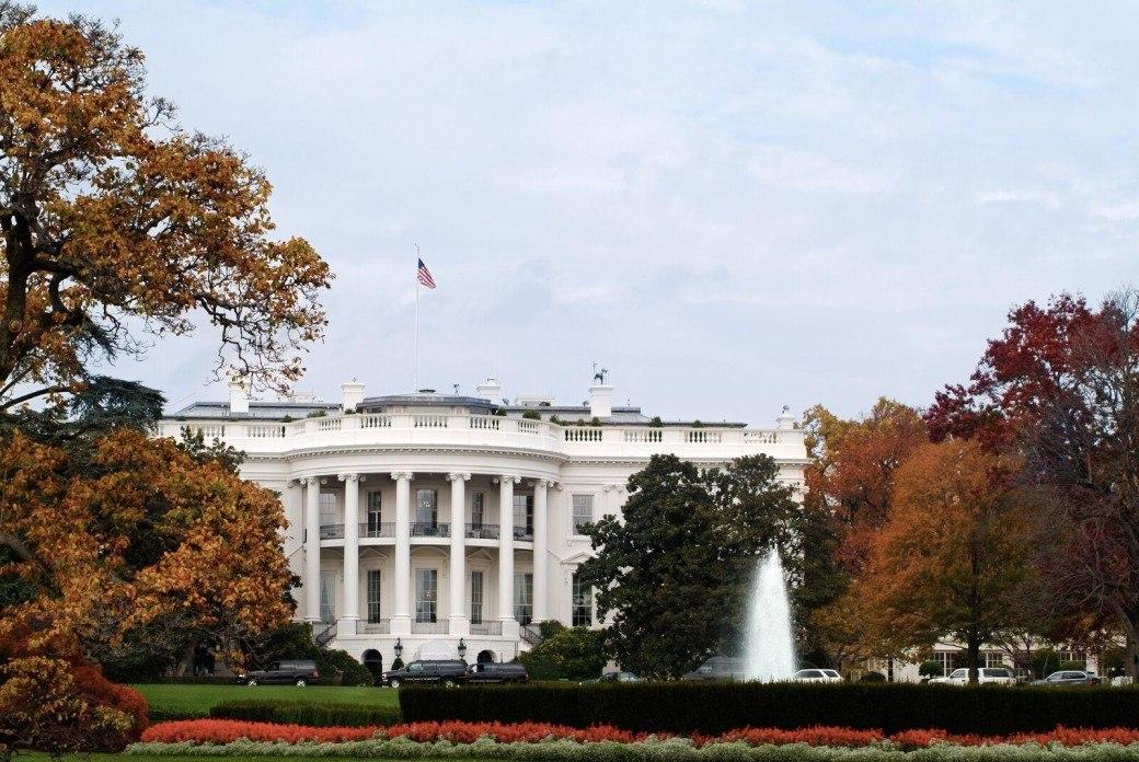White House trees