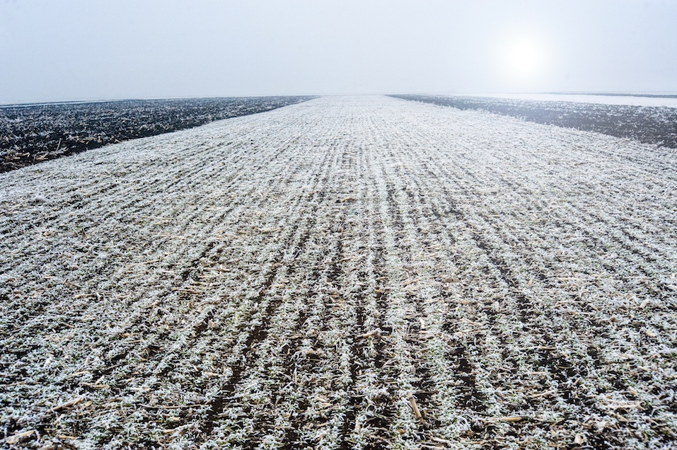 Preparation of fields during winter