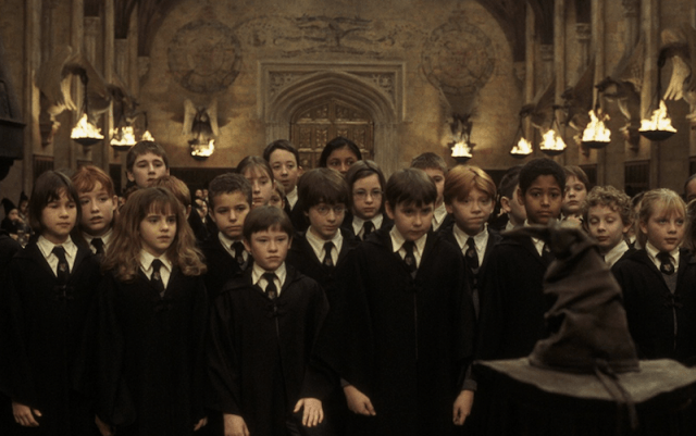 Hogwarts students lined up in front of the sorting hat.