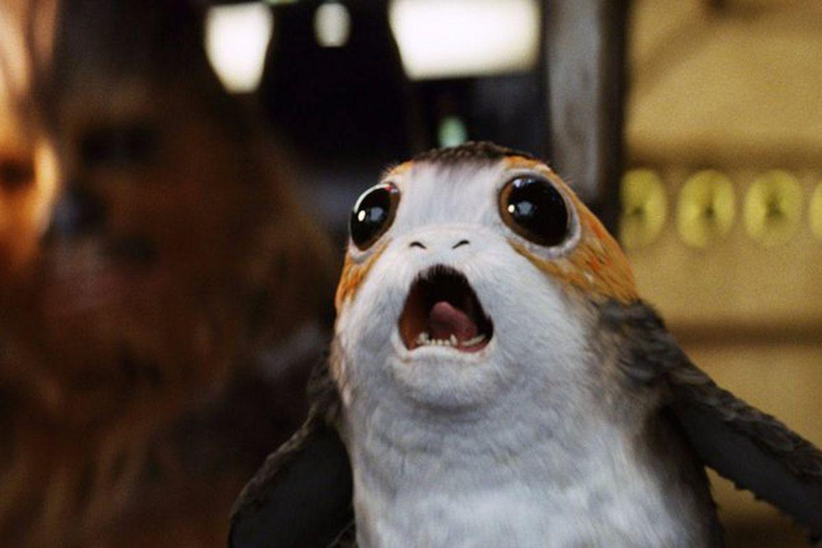 A porg in Star Wars: The Last Jedi