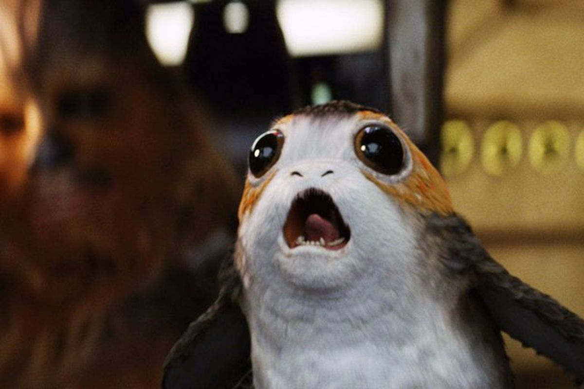 A porg in Star Wars: The Last Jedi