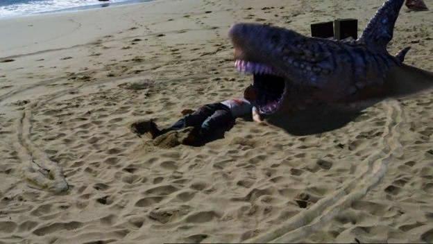 A shark on sand