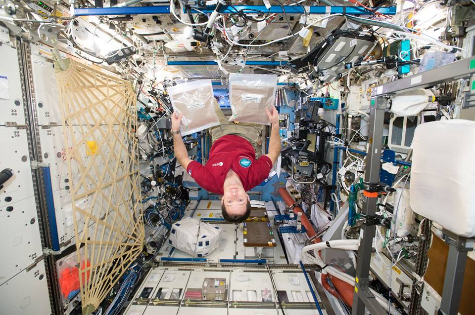 astronauts eating in outer space - photo #9
