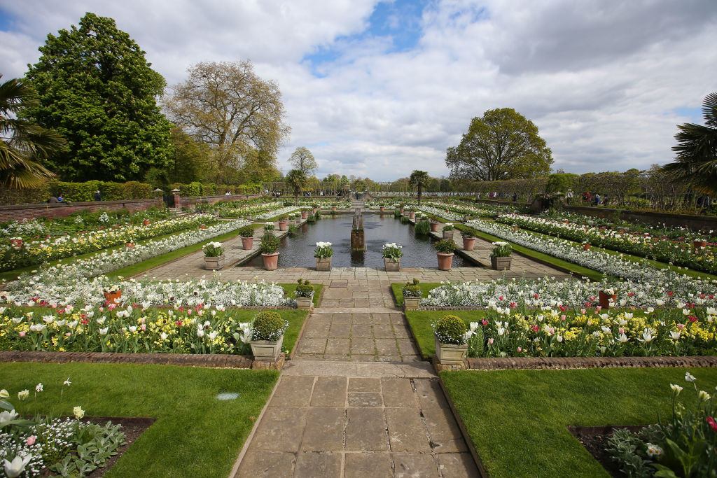 Blossoms are seen in the White Garden, created to celebrate the life of Diana