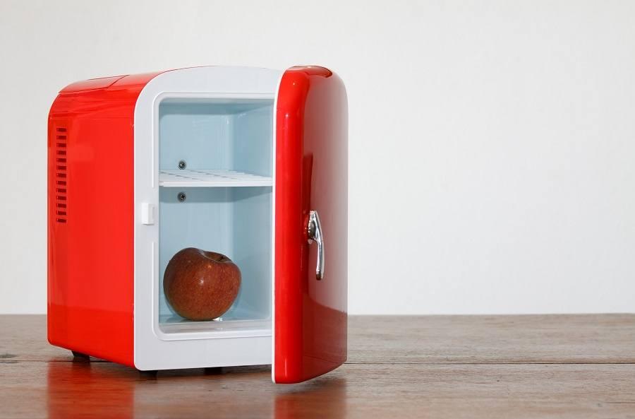 Small fridge