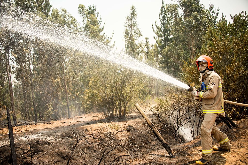 a firefighter sprays dry, brown woods with a fire hose