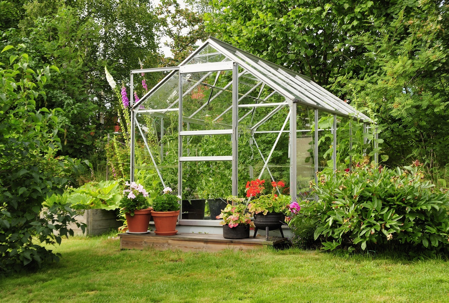 A green house full of flowers and plants