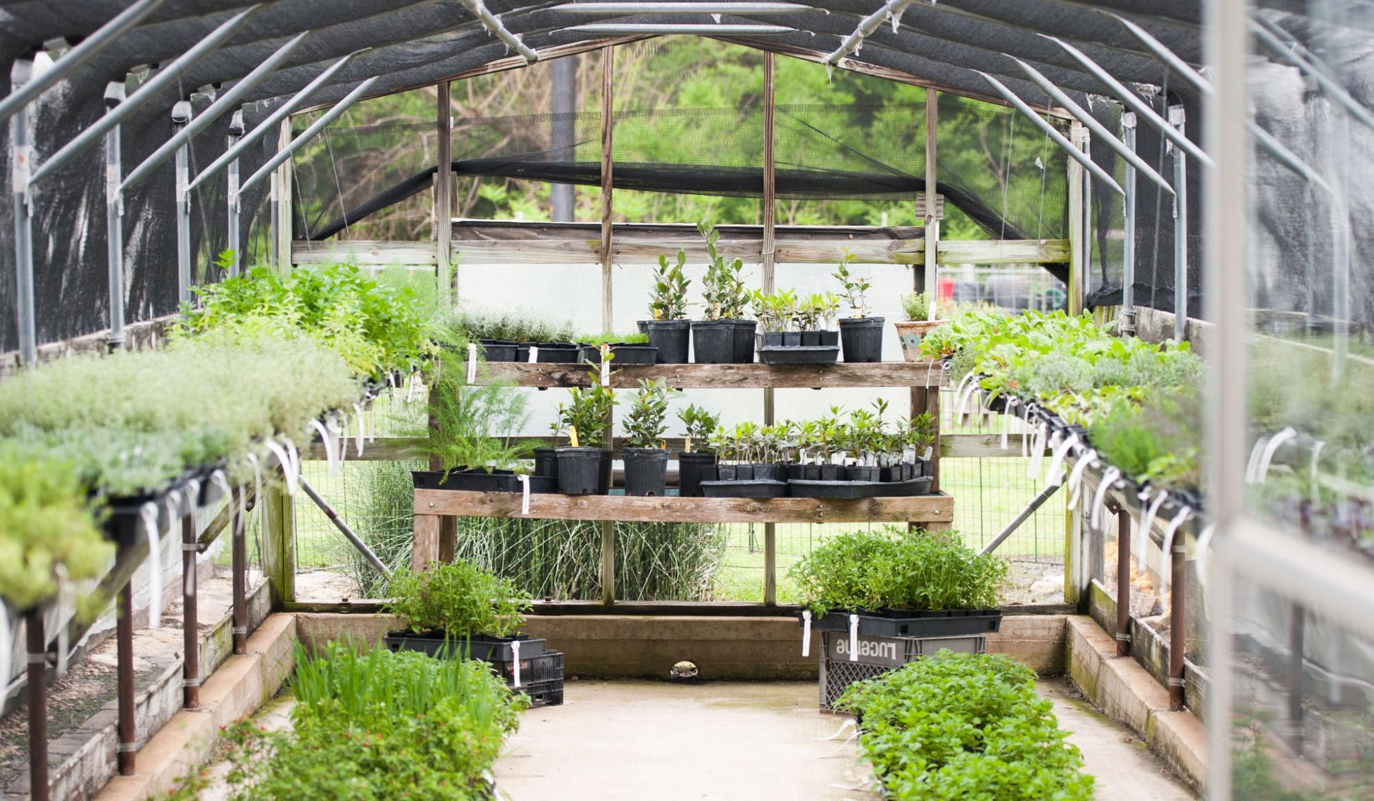 Greenhouse joanna gaines interior
