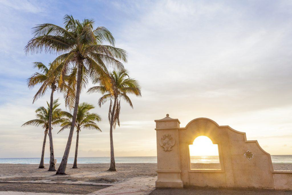 Palm trees at sunrise in Hollywood, Florida