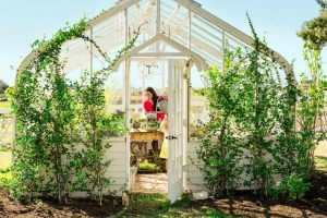 Want a Backyard Greenhouse Like Joanna Gaines? Here's How to Get the Look