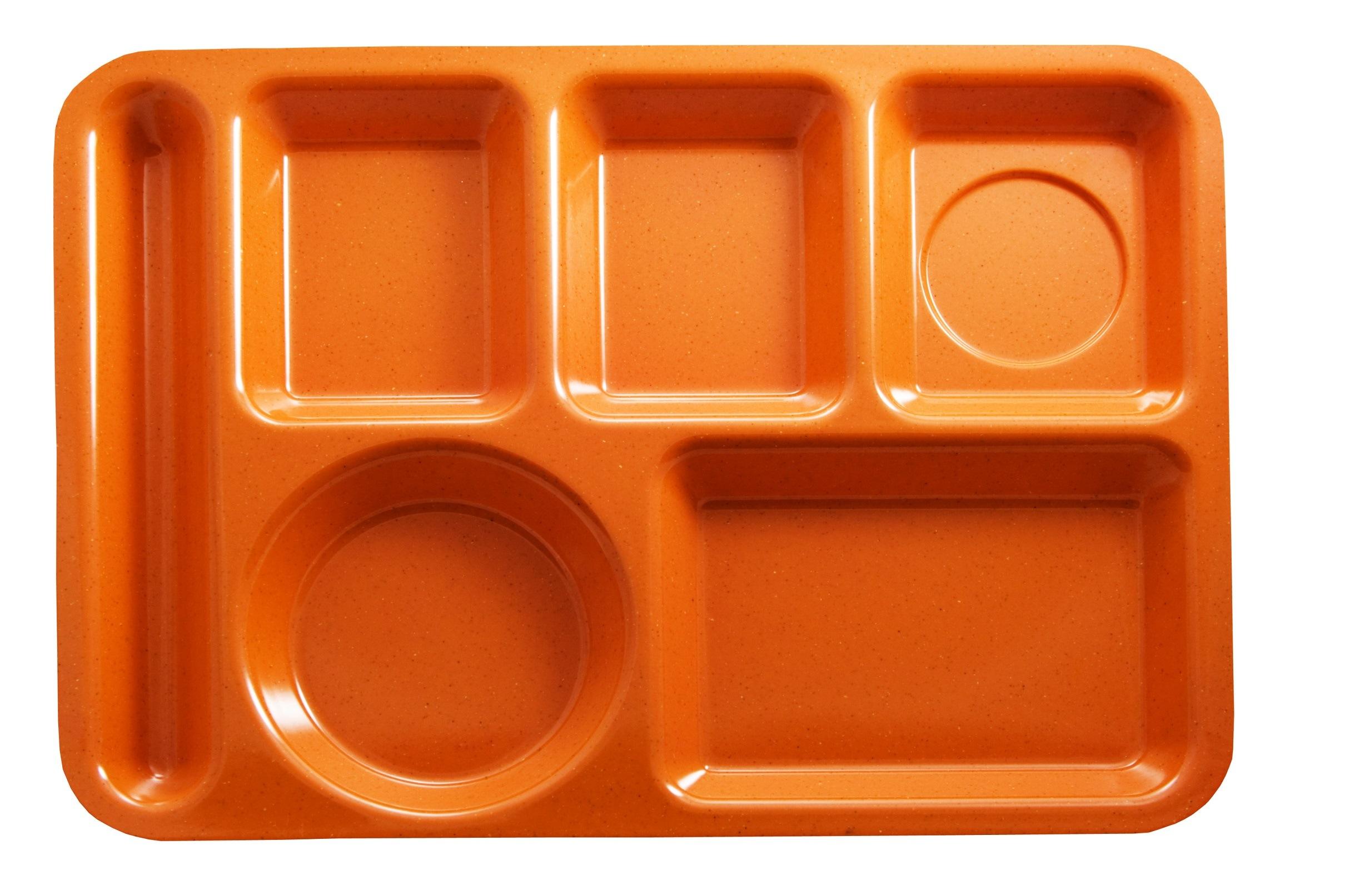 Empty lunch food tray