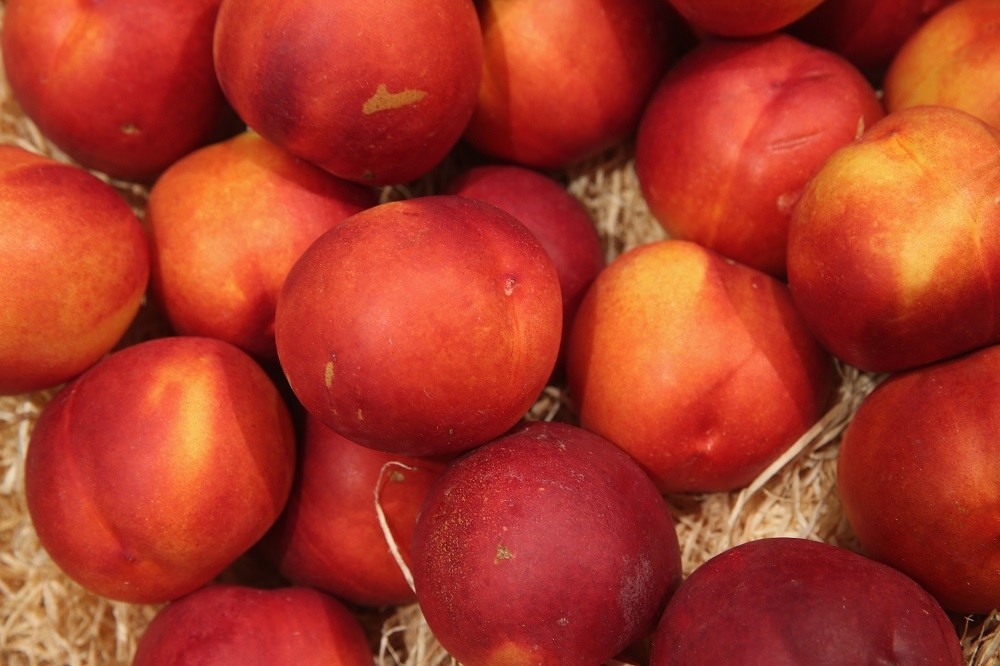 Organic nectarines lie on display