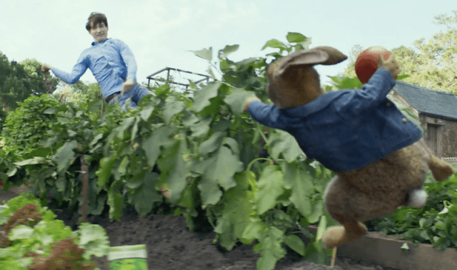 Peter Rabbit and Mr. McGregor throwing objects at each other.
