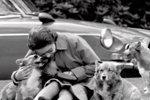 You Need to See the Ways Queen Elizabeth II Pampers Her Royal Pups