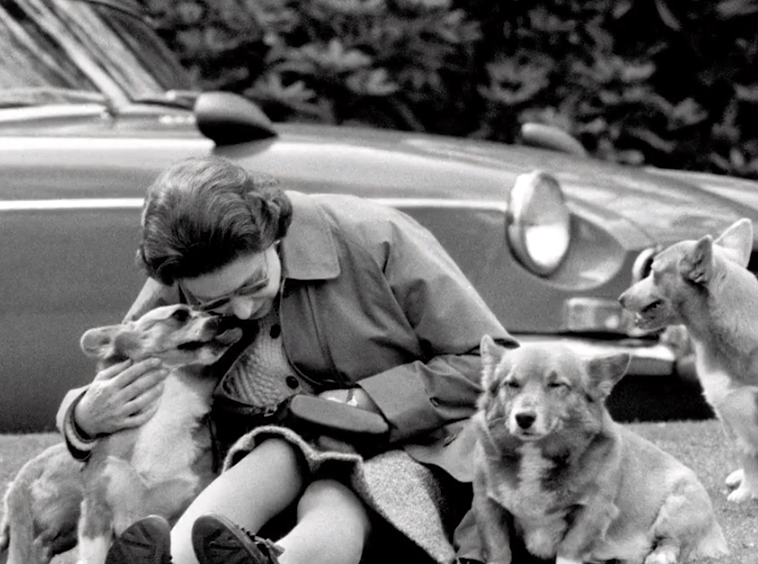 Queen Elizabeth and her corgis