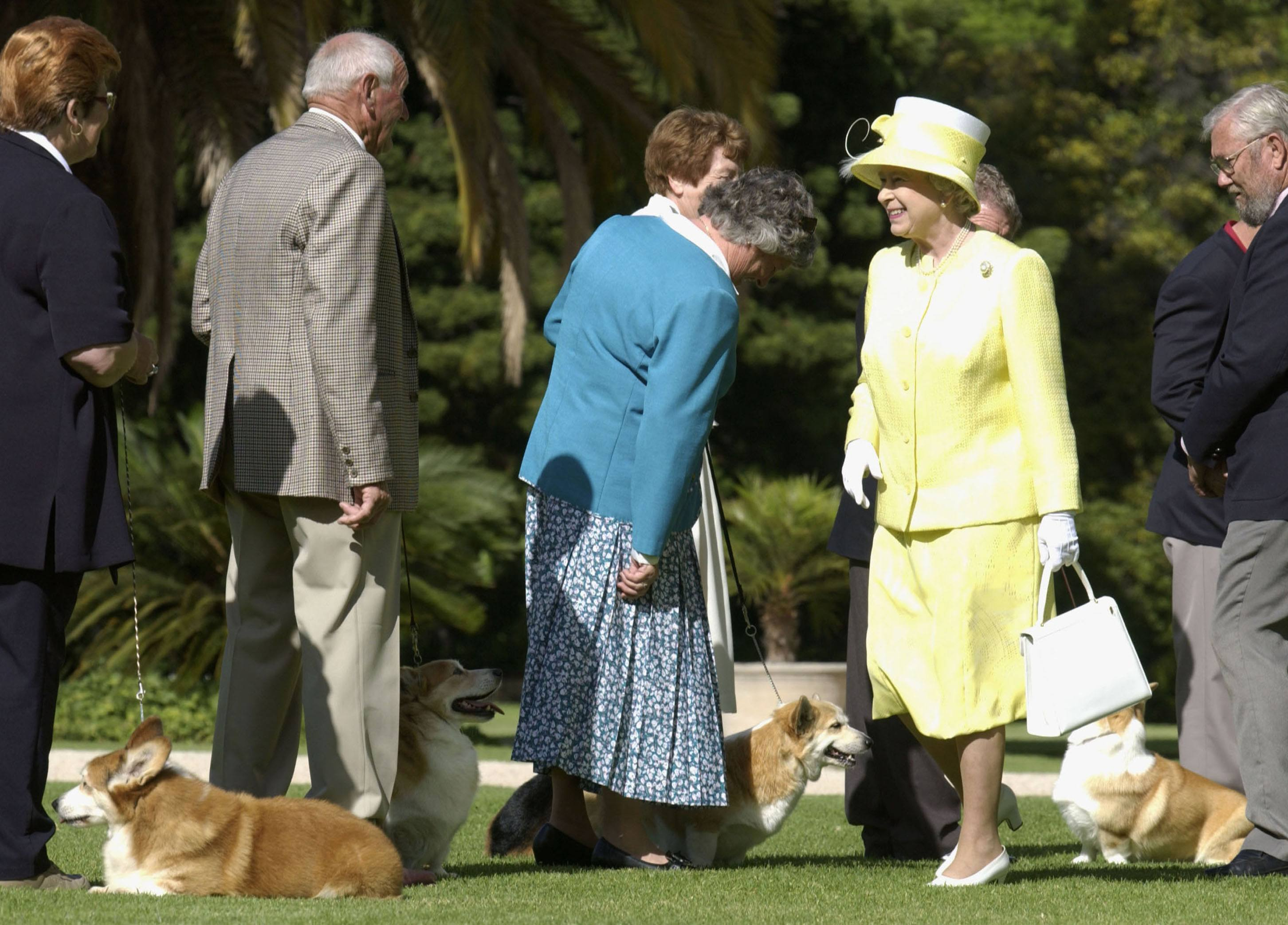 Queen Elizabeth in Australia with corgis