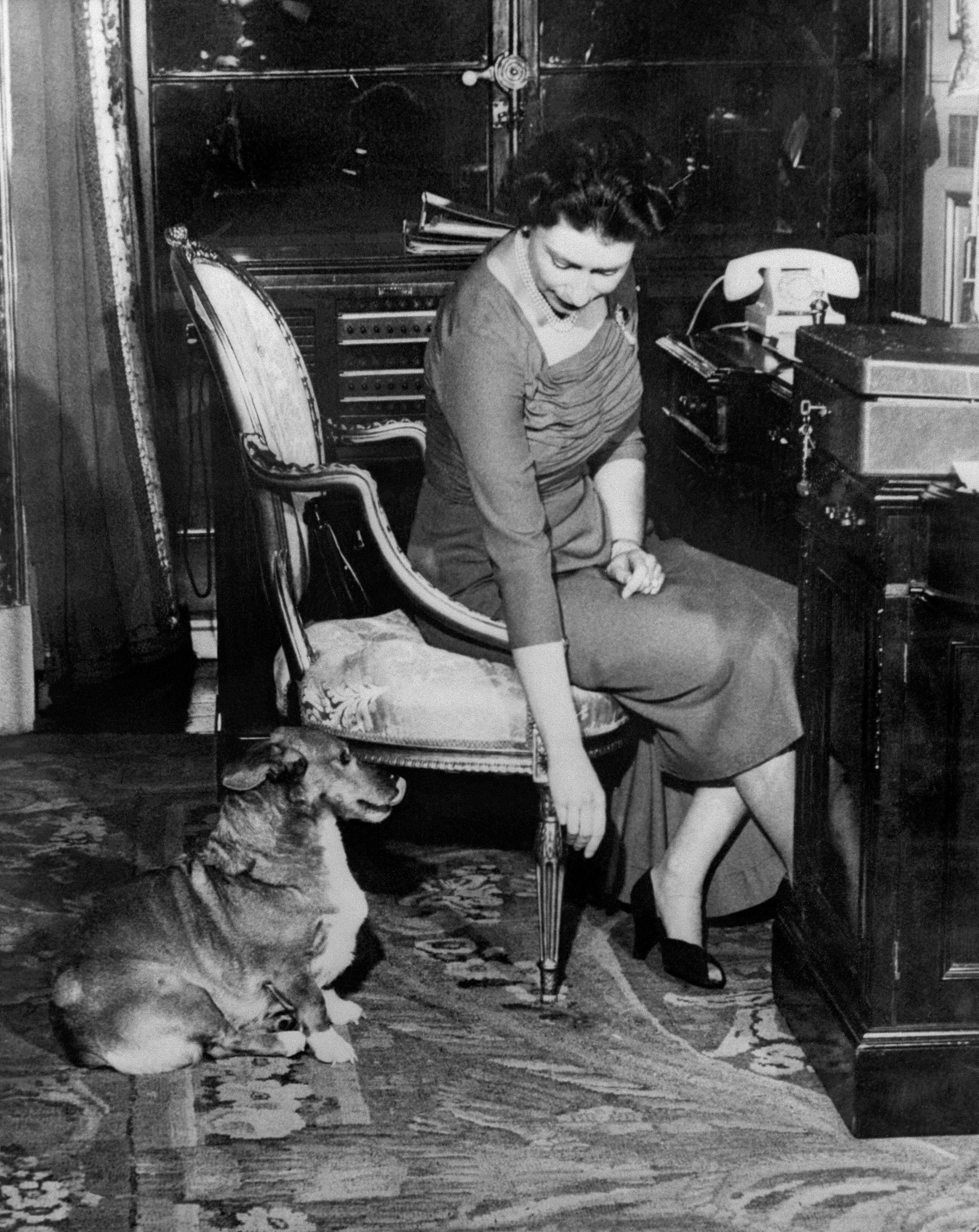 Britain's Queen Elizabeth II in her office with her corgi in 1959