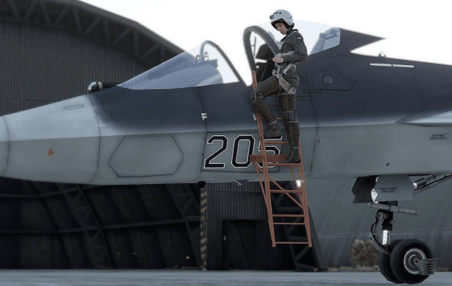 A pilot and the aircraft.