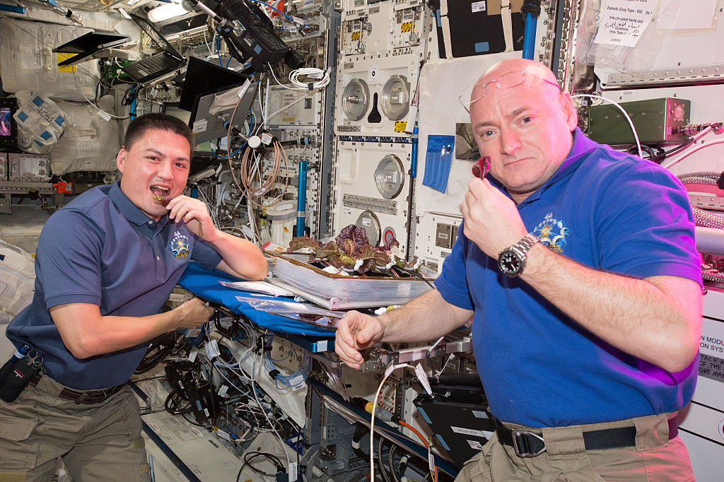 NASA astronauts Scott Kelly and Kjell Lindgren are getting their taste buds ready