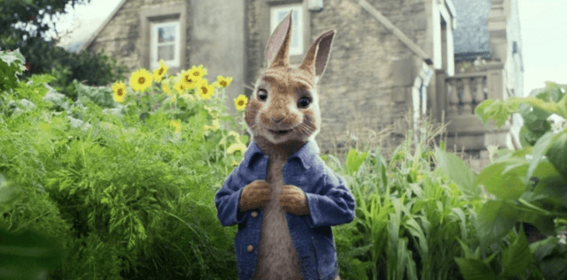 Peter Rabbit stands in a garden wearing his famous blue shirt.