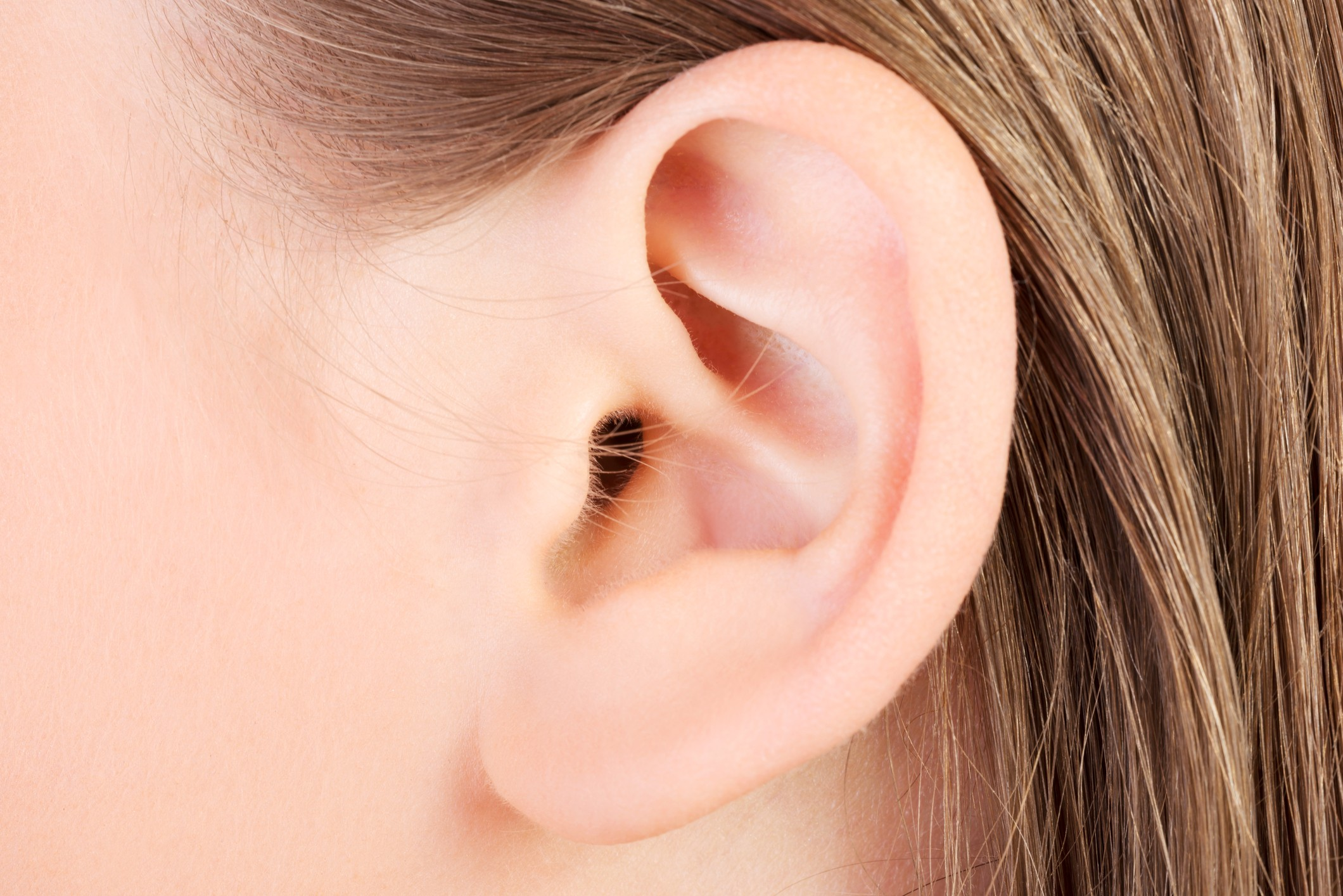 Close-up of a human ear of a person with blond hair
