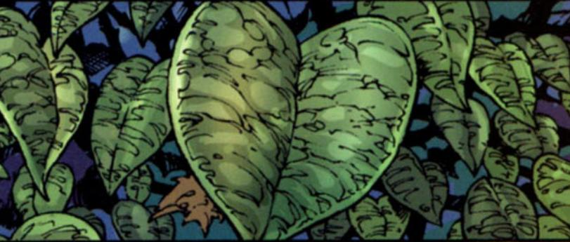 The Heart-Shaped Herb in Black Panther
