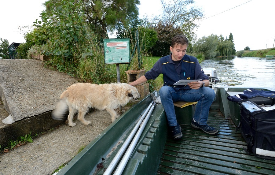 French postman Nicolas Hudelle caresses a dog from his small boat during a mail delivery