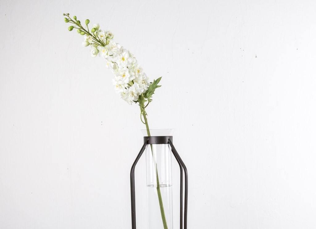 white delphinium flower magnolia market