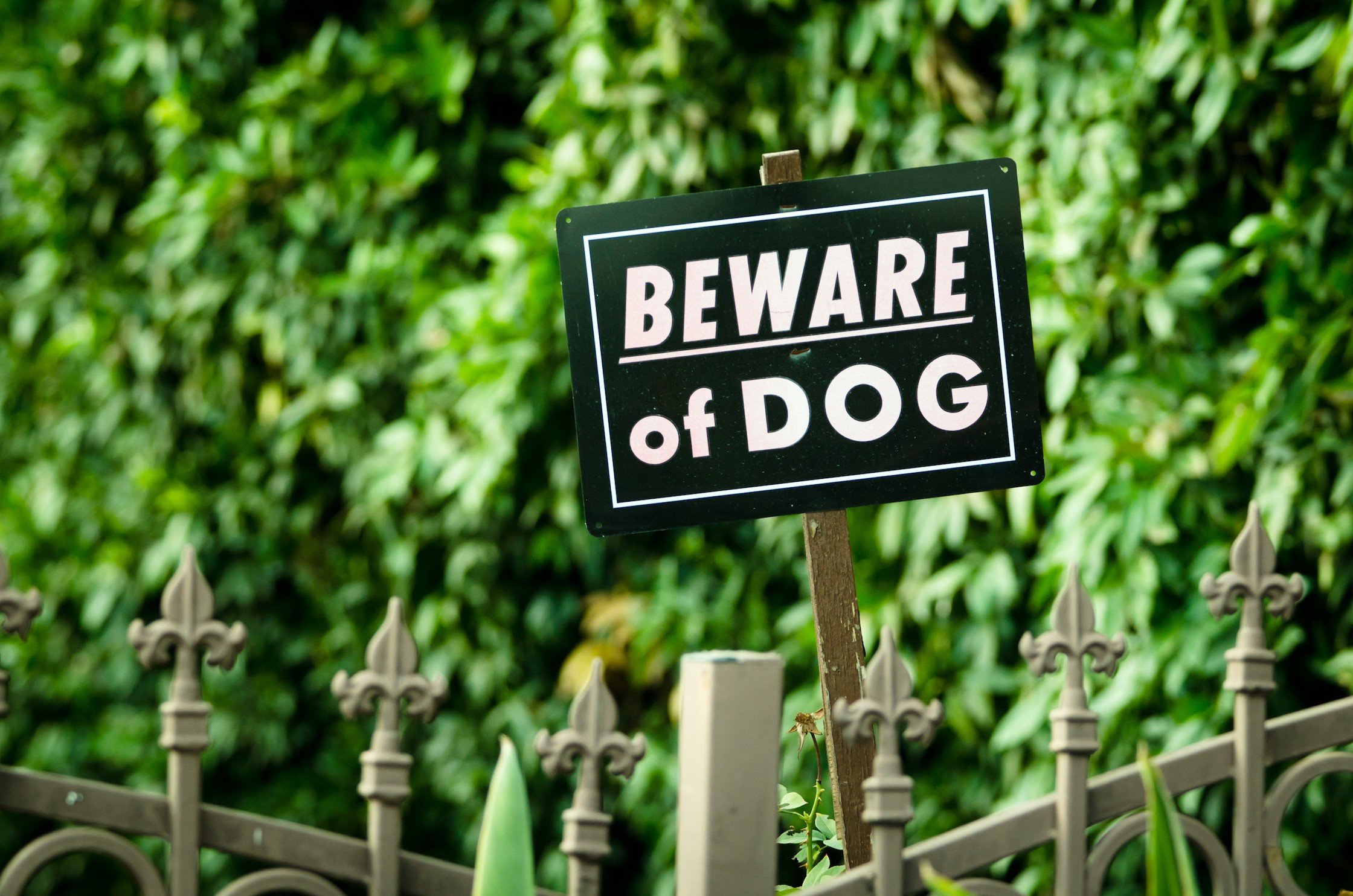 Black beware of dog sign over fence with green background