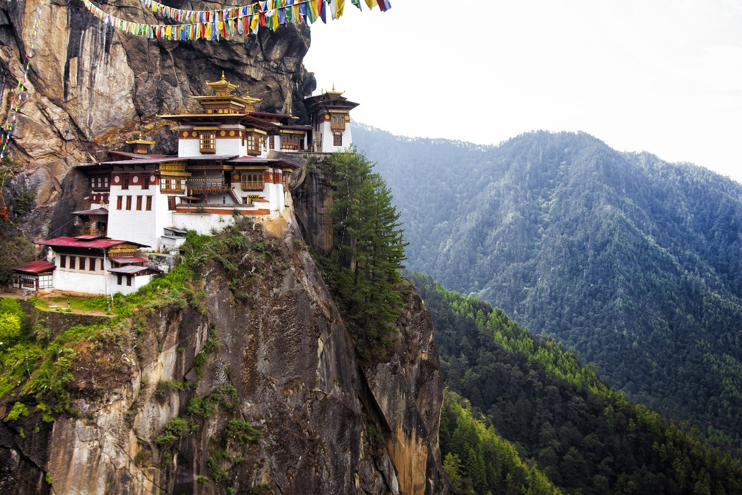 Buddhist temple located on the side of a cliff in Bhutan