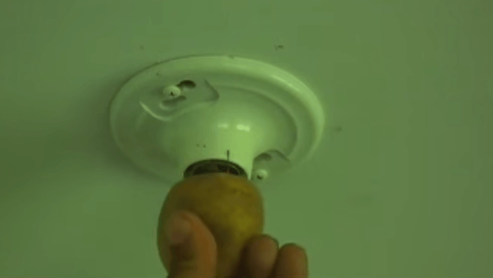 Broken lightbulb potato
