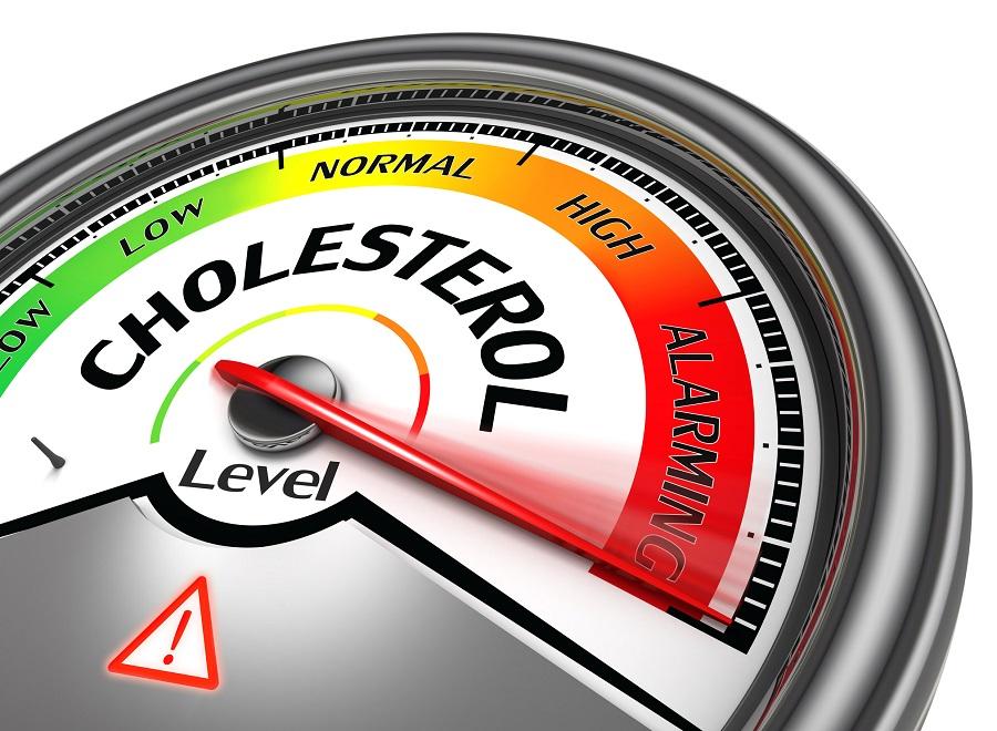 cholesterol level conceptual meter