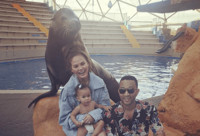Chrissy Teigen and John Legend posing with a seal and their baby.