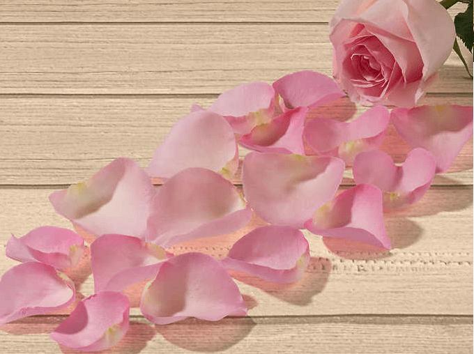 Costco Rose Petals