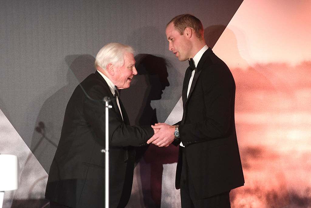 Prince William and David Attenborough