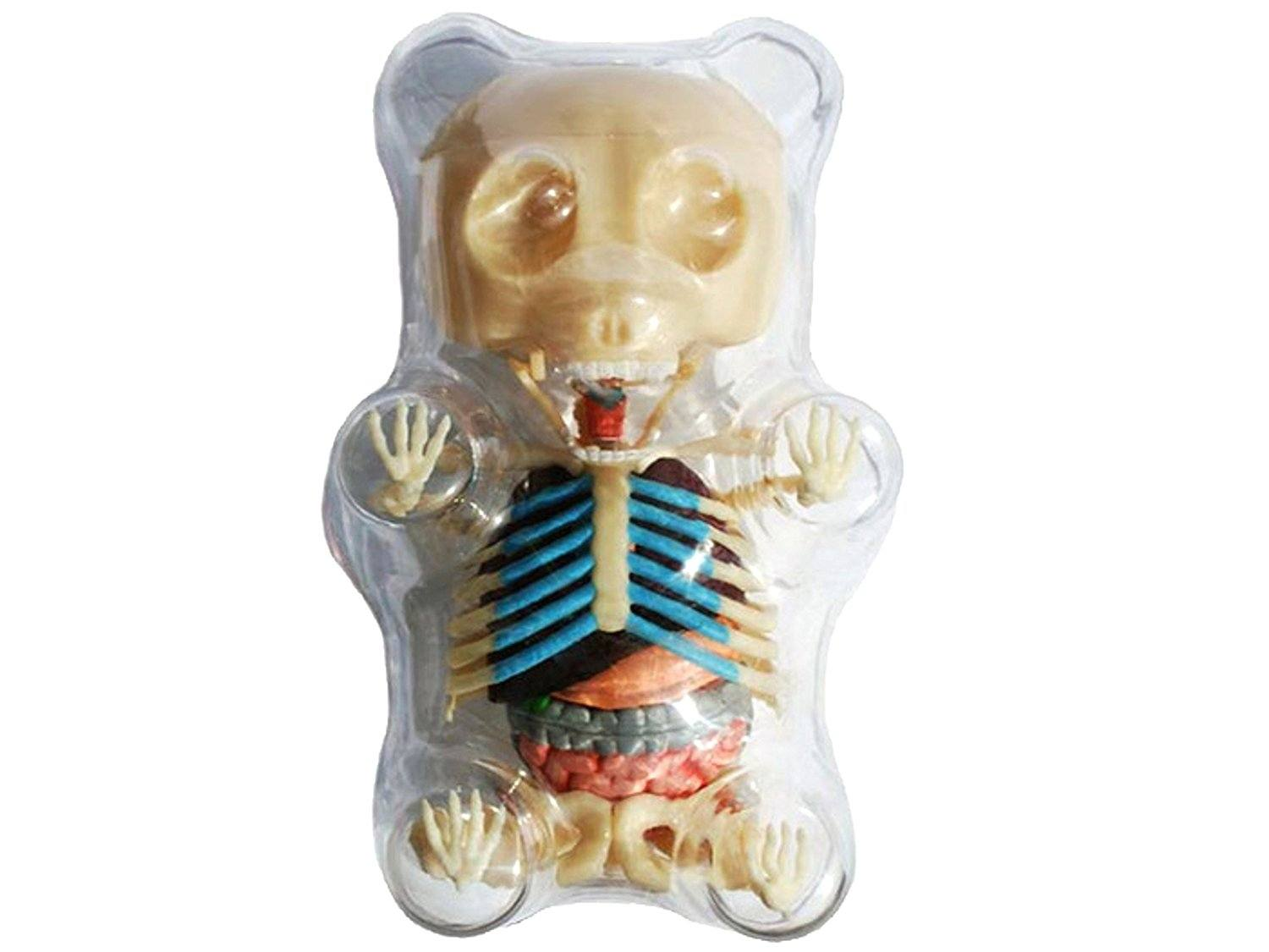 Gummie bear skeleton