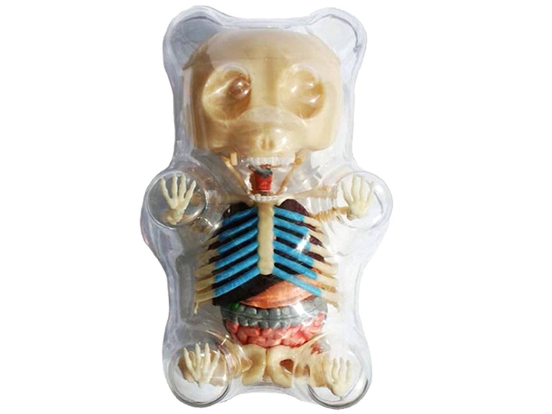 Gummie bear skeleton