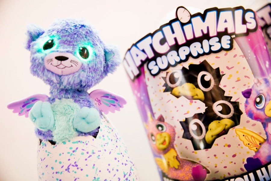 A Hatchimals Egg Surprise