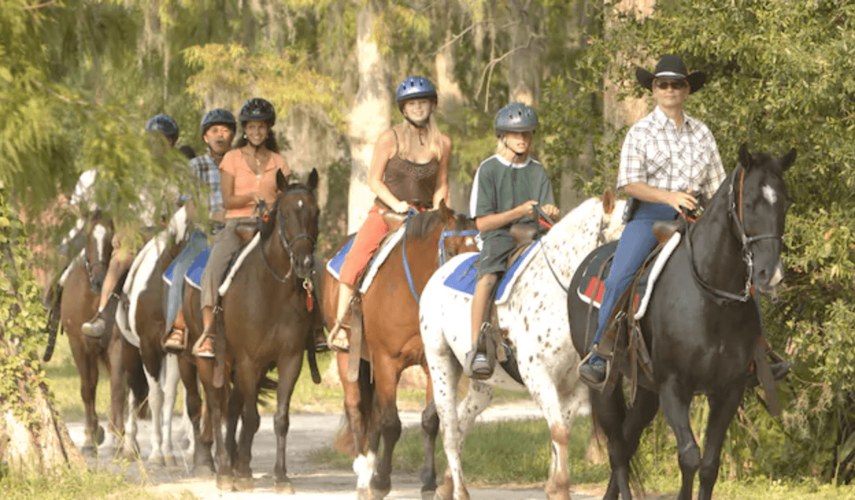 Horseback riding disney