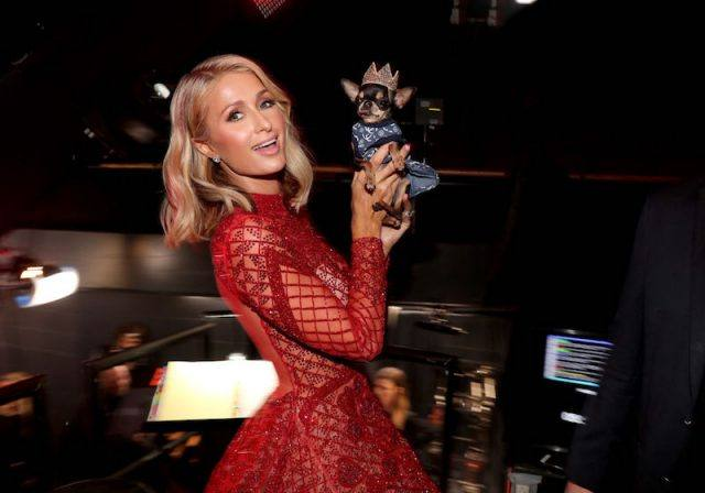 Paris Hilton holding a dog and twirling.