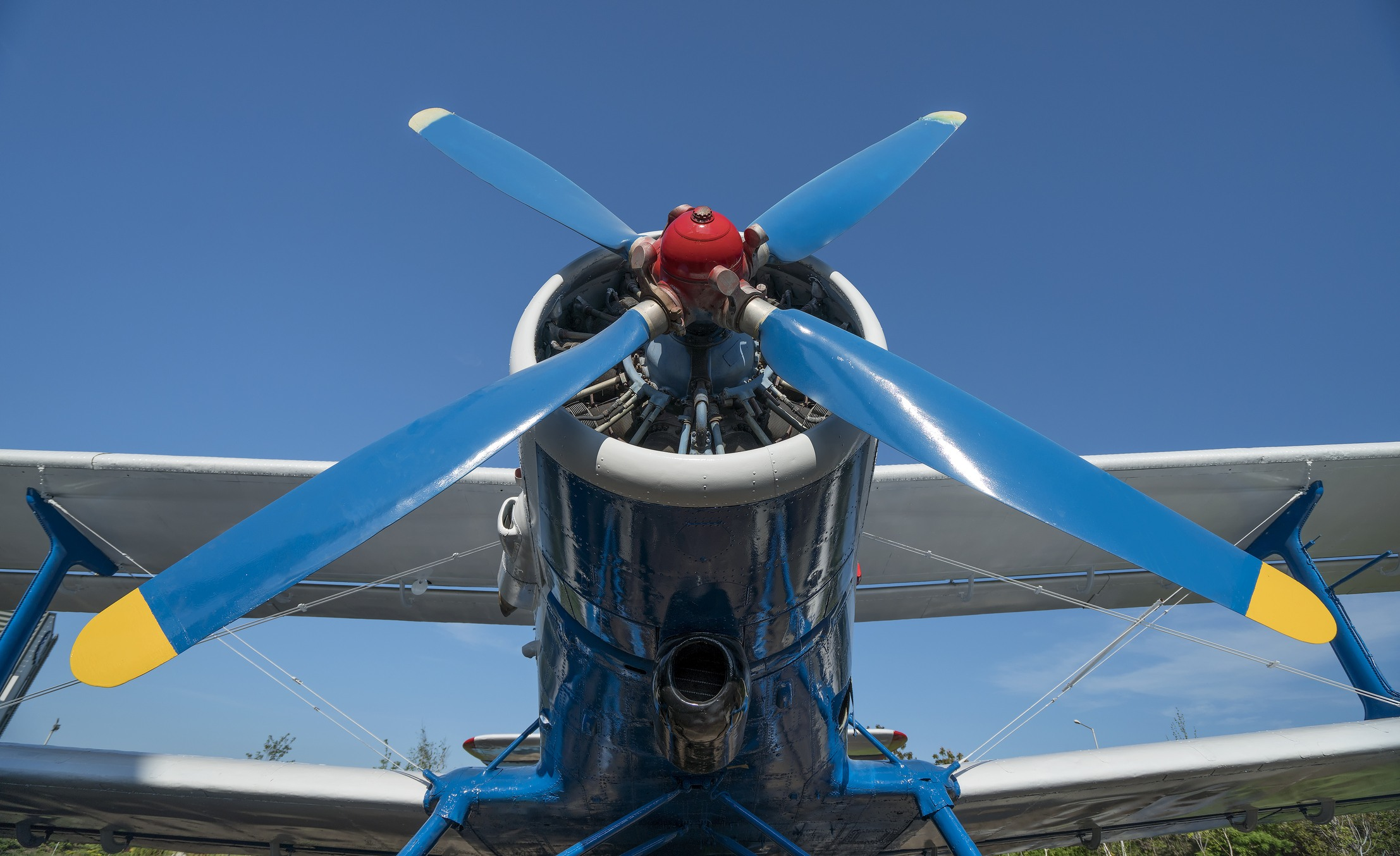 Blue and white airplane propeller
