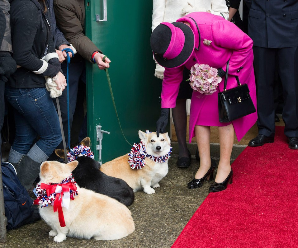 Queen Elizabeth II strokes a corgi during a visit to Sherborne Abbey