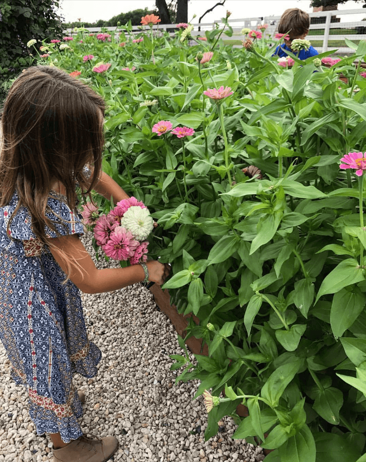 Gaines daughter picking flowers