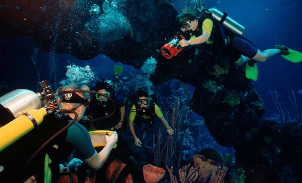 Scuba diving disney