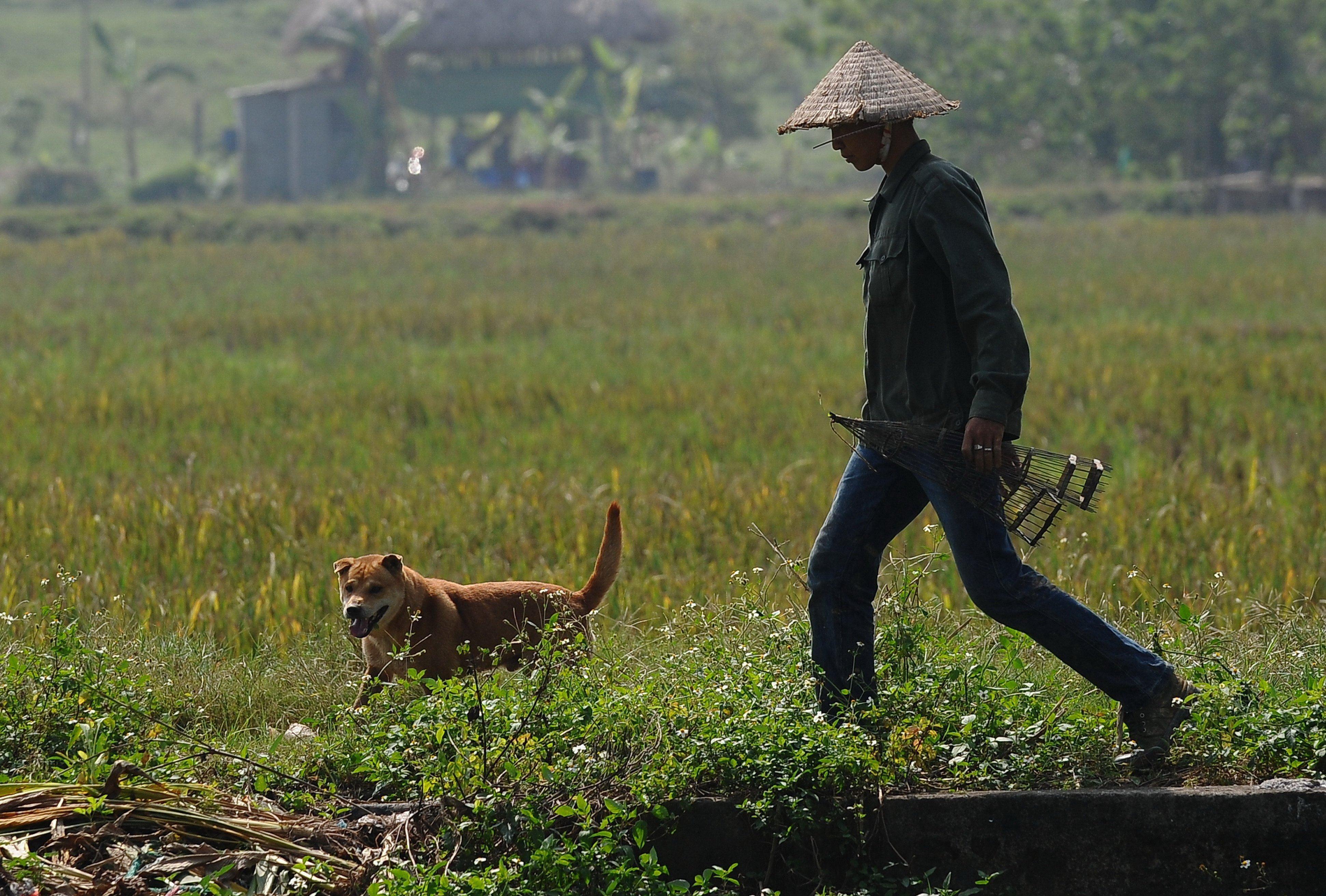 Vietnamese man with dog