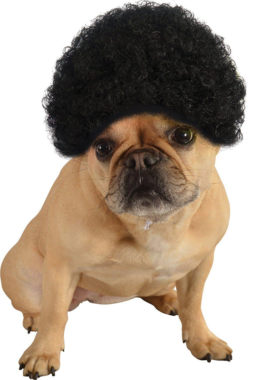 dog wig afro
