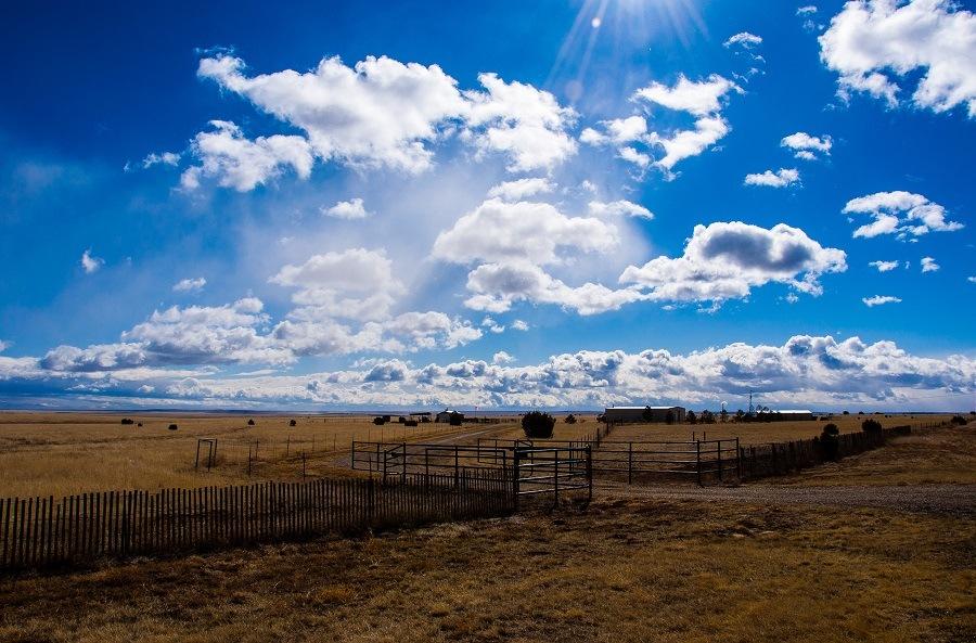 Amarillo Farm Fields