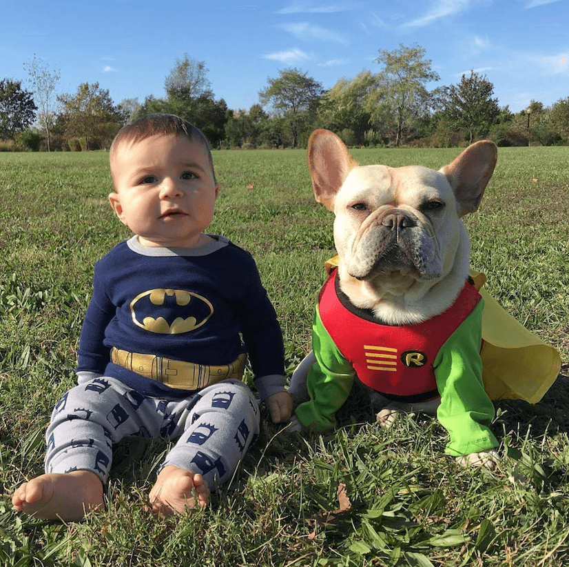 Baby and dog superhero